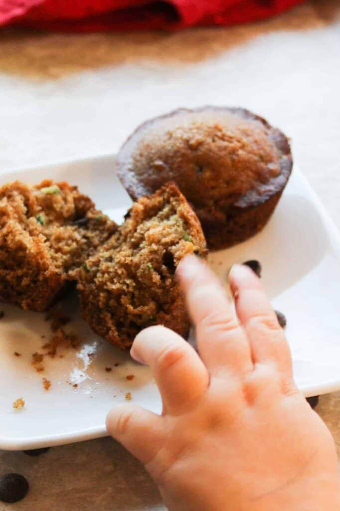 zucchini muffins with chocolate chips child hand