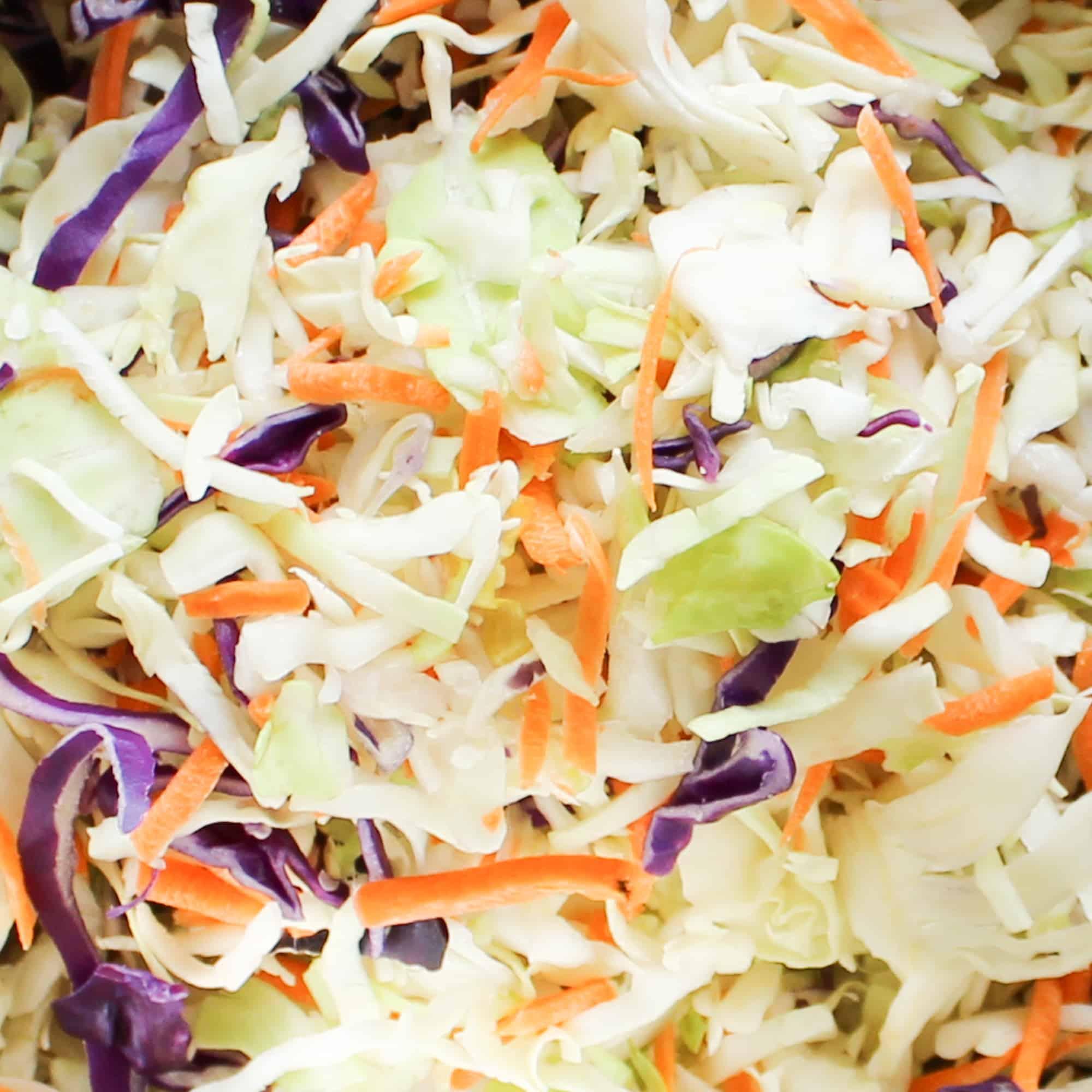 cabbage closeup