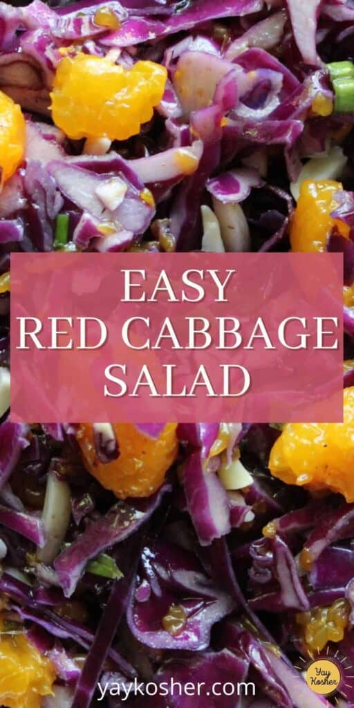 red cabbage salad pin