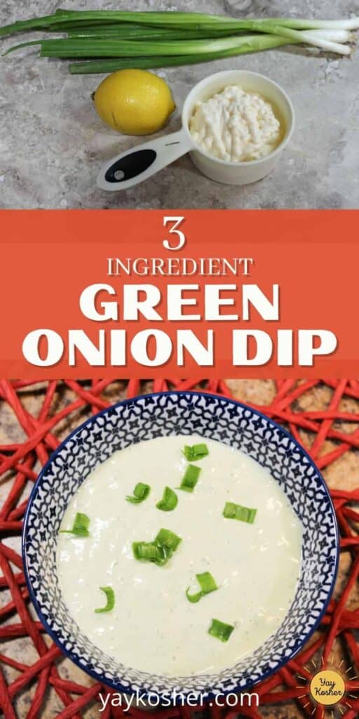 green onion dip pin